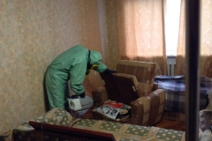 Дезинсекция в квартире. г. Санкт-Петербург