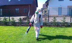 В ожидании дезинсекторов: как подготовить помещение к истреблению насекомых