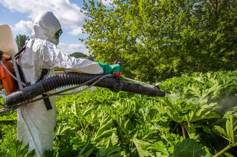 уничтожение растений